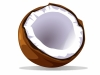 1273219_coconut_